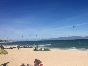 kites in La Ventana